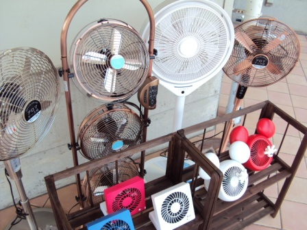 扇風機セール中です!