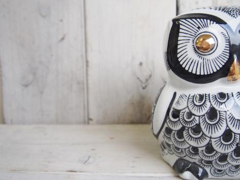 amabro  OWL BANK